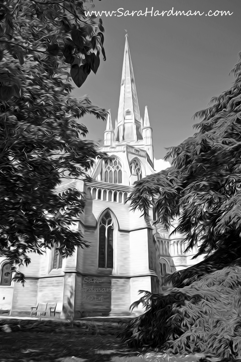 Norwich Cathedral by Sara Hardman