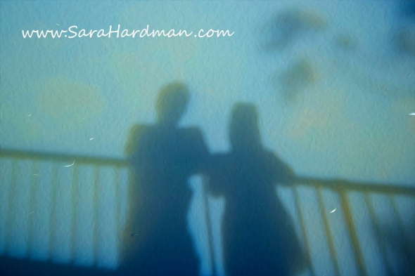 Shadows by Sara Hardman