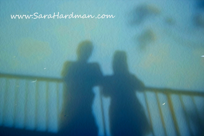 Shadows by Sara Hardman