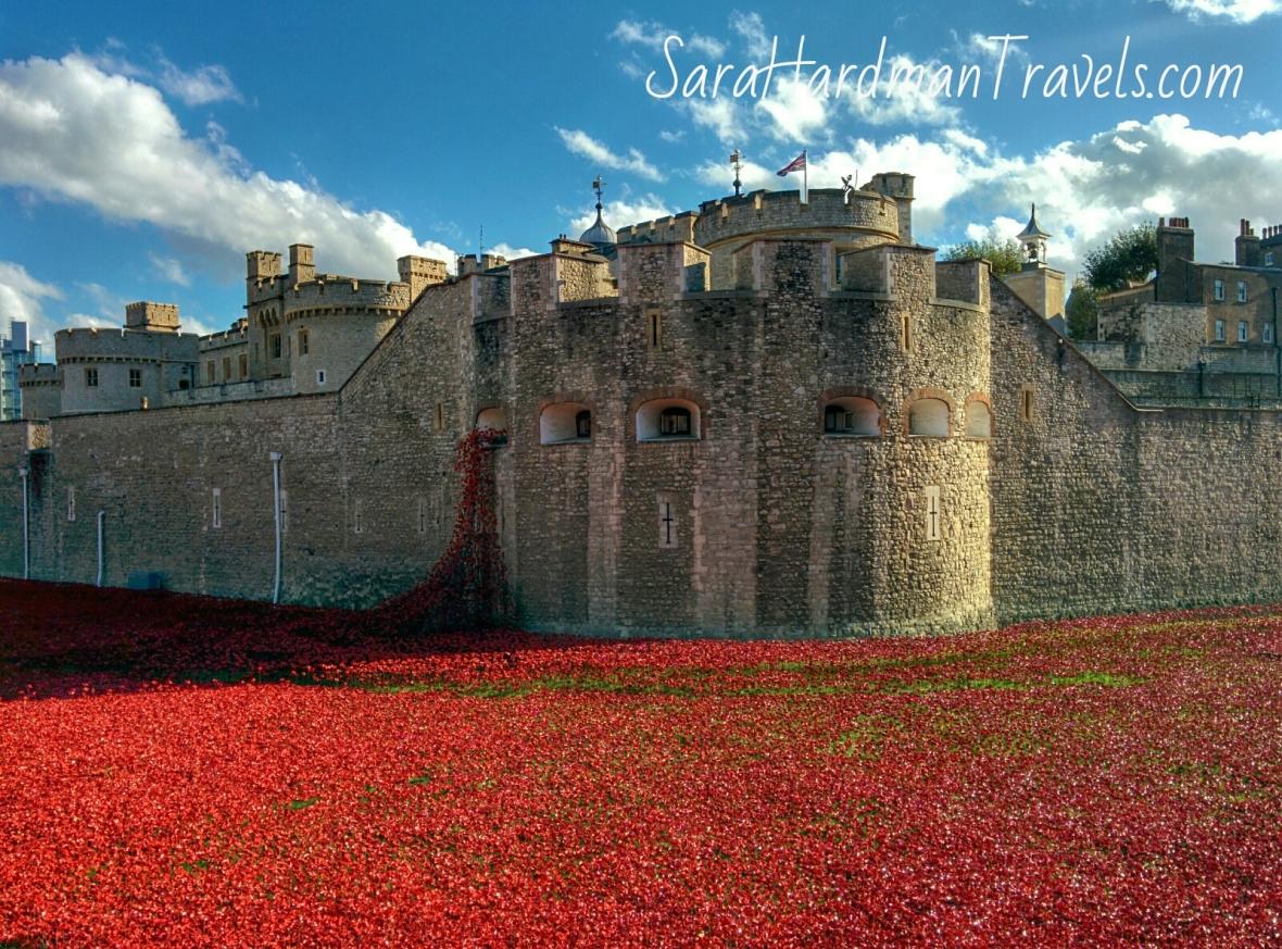 Sara Hardman Tower of London poppies